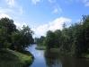 Schwanenteich im Schlosspark