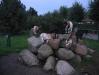 Ziegen beim Campingplatz