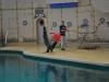 Seelöwenshow im Kinderzoo